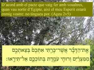 Esdres i Nehemies (Exemples per a la Reconstrucció Nacional) 01