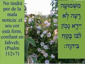 Esdres i Nehemies (Exemples per a la Reconstrucció Nacional) 06