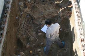 Les Tombes Flamejants i La Vall dels Ossos Secs 04